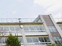 Ordinanza n. 3864: Fondo per l'adeguamento strutturale ed antisismico degli edifici scolastici