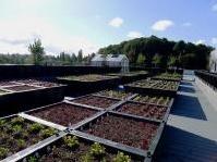 : Green building, uno studio sui benefici economici -   Dal World Green Building Council un'analisi che conferma la valorizzazione del costruito, l'incidenza sull'investimento e persino l'aumento della produttivita' di chi lavora in una struttura 'verde'