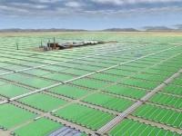 Impianti: Elettricita' dalle alghe: la scommessa di Lucca - Superato il test pilota, si va verso la costruzione dell'impianto industriale che occupera' una superficie di oltre 7.000 mq nell'area della ex Cucirini