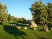 verde e giardini: A Lamezia Terme un Parco della Biodiversita' -   Approvato dalla giunta provinciale il progetto per un centro giovanile multi cultura un'area verde attrezzata