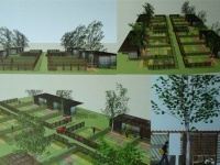 verde e giardini: Orti urbani e 'social' per il recupero di aree verdi -