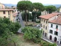 verde e giardini: Verde, pochi i Comuni che adottano piani regolatori -   Il rapporto Istat fotografa un'Italia in cui alcuni capoluoghi non garantiscono piu' di 9 mq di verde urbano per cittadino