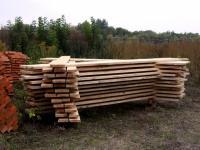 Il legno, ricchezza naturale e rinnovabile