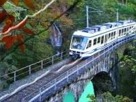 manutenzione: Adeguamento statico e sismico di quattro ponti ferroviari -   Avviso di gara per lavori di manutenzione sulla linea ferroviaria Domodossala-Locarno