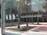 News: Un nuovo edificio per la ricerca a Torino - Lavori di costruzione di una struttura per la ricerca nel campo delle biotecnologie nel capoluogo piemontese