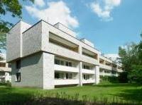 News: Riqualificare con il legno: le 'Treehouses' ad Amburgo - Il complesso residenziale, originario degli anni Cinquanta, protagonista di un importante progetto di ampliamento e recupero firmato da Blauraum Architekten