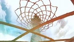 News: Verso Expo 2015, il Padiglione Italia e i contenuti espositivi - Un percorso ispirato al tema �Vivaio Italia' mettera' in mostra le eccellenze italiane. Ad accogliere i visitatori un viale pavimentato largo 35 metri e lungo 325 metri