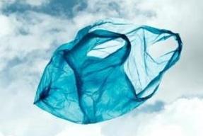 Bioshopper falsi, arriva l'inchiesta: Il pm Raffaele Guariniello apre un fascicolo dopo la denuncia di Assobioplastiche contro chi mette in commercio sacchetti falsamente biodegradabili