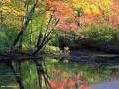 Presentata l'Agenda ambientalista per la ri-conversione ecologica del Paese