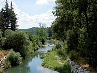 Roma per Copenaghen pianta 1000 alberi