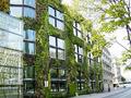 verde e giardini: Bonus del 55% anche per i tetti verdi e giardini pensili -   � una proposta di legge avanzata alla Camera per combattere l'inquinamento e miglioramento della qualit� della vita