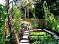 verde e giardini: Zappata Romana -   Una mappa per censire tutti gli orti condivisi della Capitale