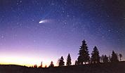 News: Le comete conducono gli scienziati all'origine della vita - Sono state ritrovate, da un gruppo internazionale di scienziati, tracce di molecole preorganiche nella polvere della chioma della cometa Wild-2 recuperata dalla sonda Stardust, tornata sulla terra nel gennaio scorso. Dall'analisi delle tracce sulla...